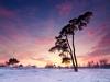 Winterse zonsondergang op het Aekingerzand