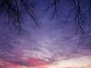 Winterse zonsopkomst Reitdiep